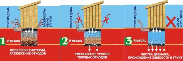 бактерии для канализации в частном доме