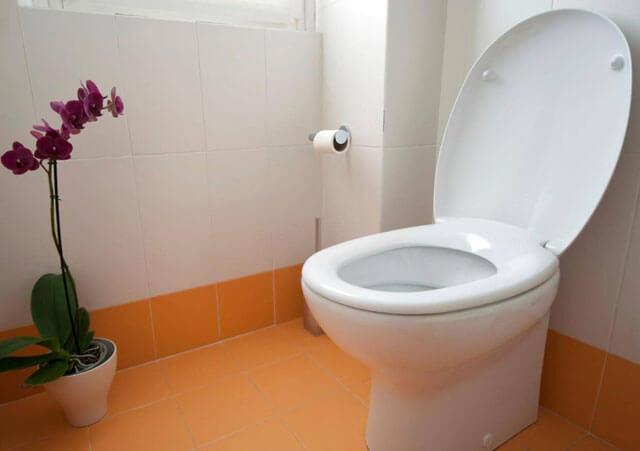 засорился унитаз как прочистить в домашних условиях