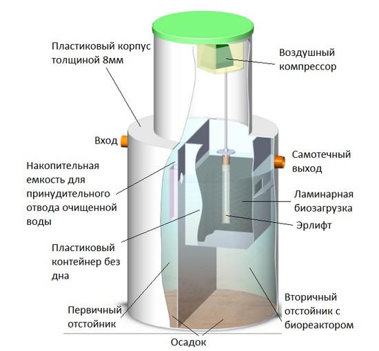 Биозон в разрезе